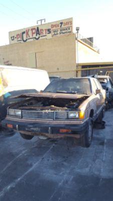 1981 Datsun 810