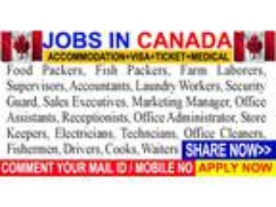 Jobs and work permit application no ielts