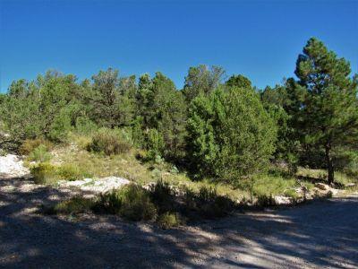 Mountain Property  in Timberon NM