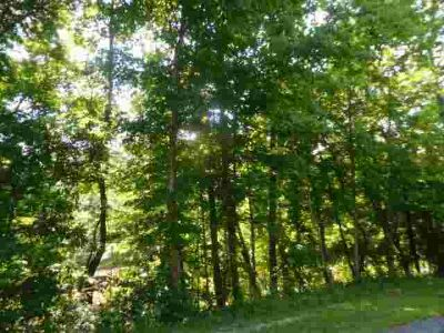 16562 Thompson Road Laurelville, Heavily wooded acreage.
