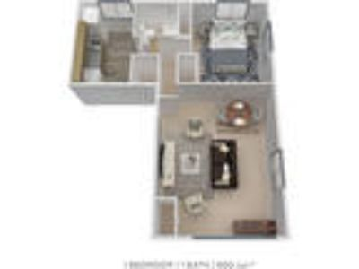 Duncan Hill Apartments & Townhomes - One BR One BA
