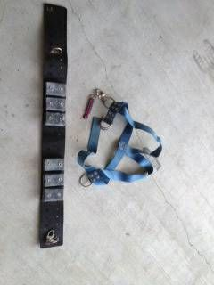 Commerical Dive Gear - Weight Belt, Standby Harness, Hat Bag