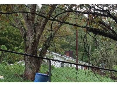 3 Bed 2 Bath Foreclosure Property in Gate City, VA 24251 - Geranium Dr