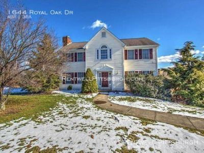 Gorgeous Single in Sewickley
