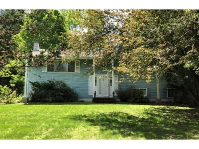 3 Bed 1 Bath Foreclosure Property in Wappingers Falls, NY 12590 - Briar Ln