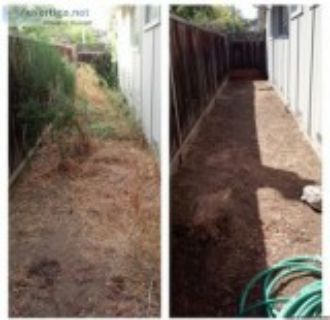 Providing leaf removal tree trimming gutter cleaning also indoor