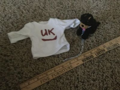 Shirt and dog for 18 inch dolls, target brand I believe $1.00 takes both.