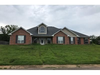 2 Bath Preforeclosure Property in Saltillo, MS 38866 - Megs Ln
