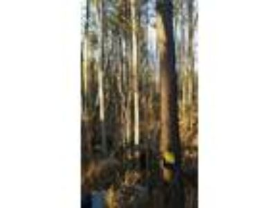 Land for Sale by owner in Sparta, GA