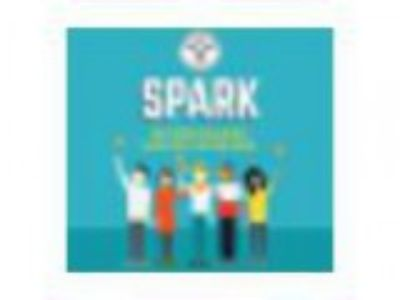 Spark Phoenix Level Up How to give your business a growth spurt