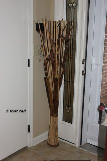 5 ft bamboo plant