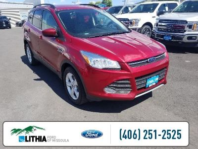 2015 Ford Escape SE (Red)