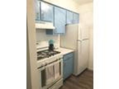 Galleria Flats Apartments - Montrose