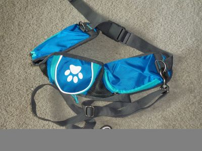 Like New Dog walking Belt when with kids