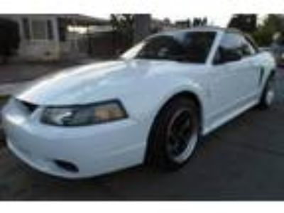 Used 2001 Ford Mustang SVT Cobra