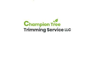 Kalispell Tree Service Montana