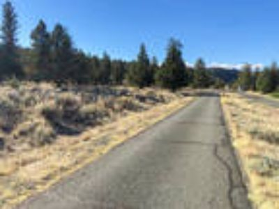 N. California Land 0.25 Acres - Lake Shastina Community