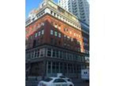 Boston - Downtown One BR One BA, A renovated condo for rent in a