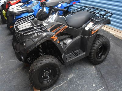2018 Kawasaki Brute Force 300 Sport-Utility ATVs Clearwater, FL