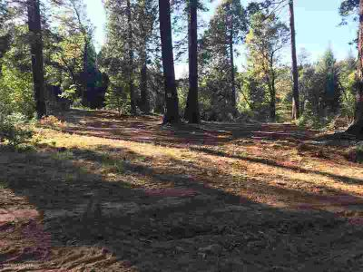 20950 Banner Quaker Hill Road Nevada City, Own a piece of