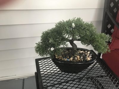 Artificial Chinese plant