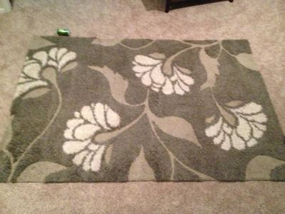 Large Beautiful BeigeGray Shag Rug