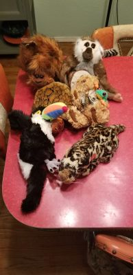 6 stuffed animals