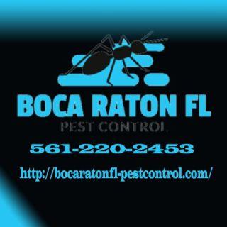 Boca Raton's Best Pest Control