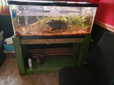 75 gallon & 25 or 29 high aquarium/fish tank