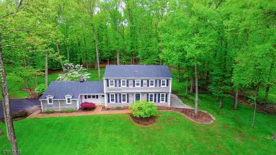 1169 Fairfield Rd BRIDGEWATER Four BR, Traditional Center Hall
