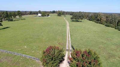 12108 Fm 1511 Buffalo Three BR, 132+ acres with very improved hay