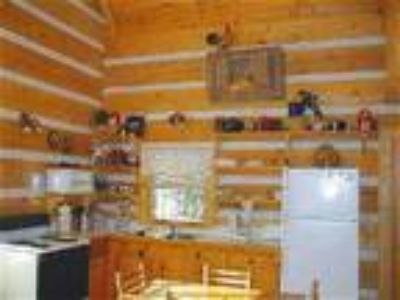 Vacation Cabin Rentals - Cabin