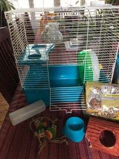 Hamster or gerbil cage and supplies
