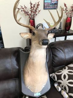 Deer head looks & feels real fully animated head, mouth, ears move