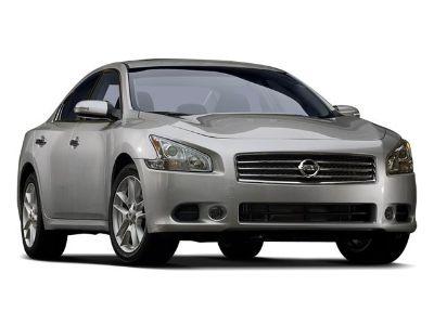 2009 Nissan Maxima 3.5 SV (Winter Frost Pearl)