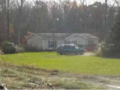 3 Bed 2 Bath Foreclosure Property in Garrettsville, OH 44231 - Center Rd