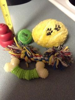 Smaller-breed Dog Toys GUC