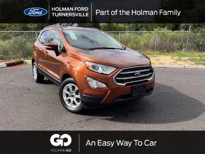 2019 Ford EcoSport SE (Canyon Ridge Metallic)