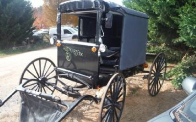 2000 Buggy Horse Buggy GT