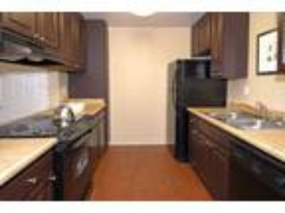 Waterleaf Apartments - Willow Classic