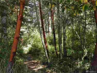 2064 Victoria Ave Port Townsend, Build your home in this