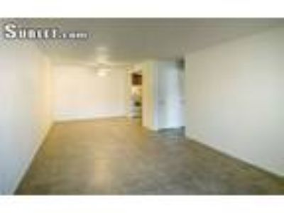$1000 One BR for rent in Hillsborough Tampa