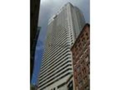 Luxurious one and 2 BR apartments in Luxury Hi Rise w/concierge NO