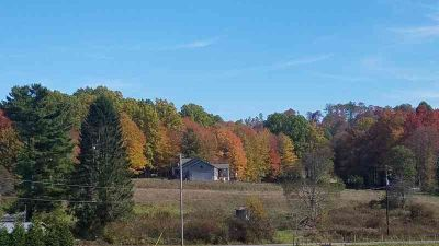 00 County Rte 85/8 Lookout, Gorgeous level acreage to build