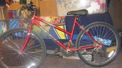 $25 12 Speed Elevation Quest Bike