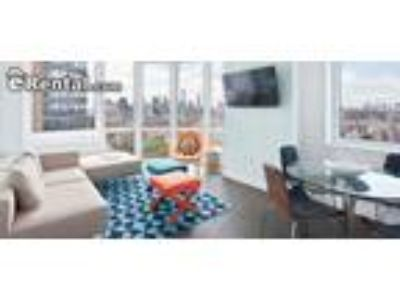 One BR One BA In Kings NY 11201
