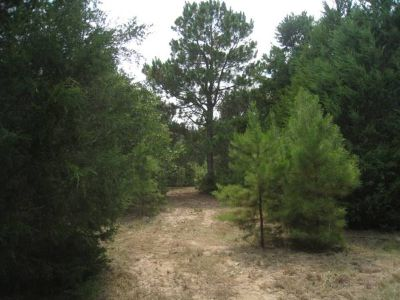 - $54450 Land for sale 8.25Acres for sale NW Smith Co.  (CR 448)