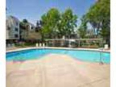 Covered Parking Pet Friendly Bay Area Apartments