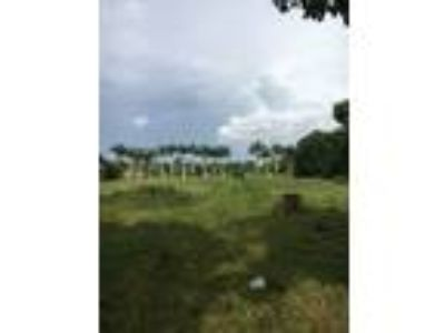 Land For Sale by Owner in Miramar
