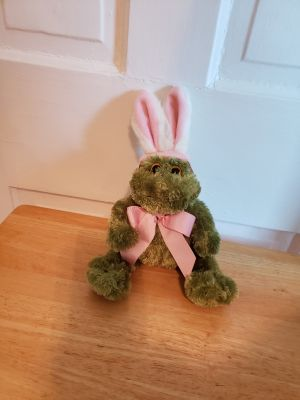 Frog with bunny costume